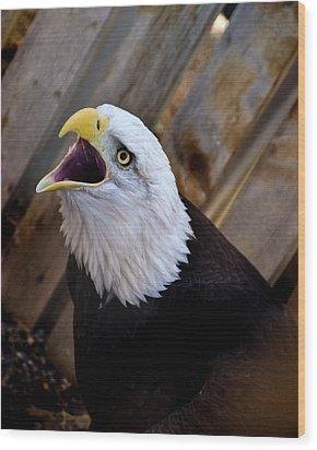 Screaming Eagle Wood Print by Harry Strharsky