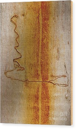 Wood Print featuring the photograph Scribbly Gum Bark by Werner Padarin