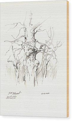 Wood Print featuring the drawing Scrub Oaks In Cottonwood by John Norman Stewart