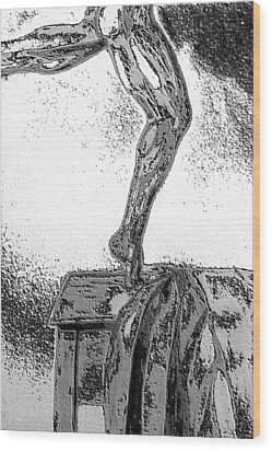 Wood Print featuring the drawing Sculpted by Barbara Giordano