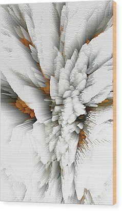 Wood Print featuring the digital art Sculptural Series Digital Painting 05.072311 by Kris Haas