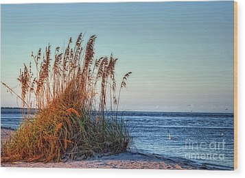 Sea Grass View Wood Print by Gina Cormier