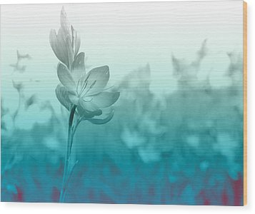 Sea Green Haze Wood Print by Barbara  White