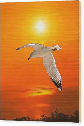 Wood Print featuring the photograph Sea Gull by Athala Carole Bruckner