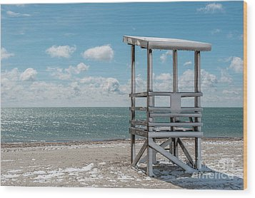 Sea Gull Beach #2 Wood Print