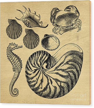 Wood Print featuring the drawing Sea Life Vintage Illustrations by Edward Fielding