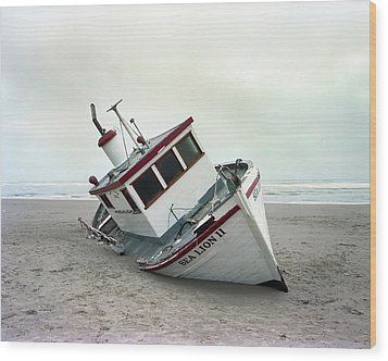 Sea Lion II - Last Day On The Beach Wood Print by HW Kateley