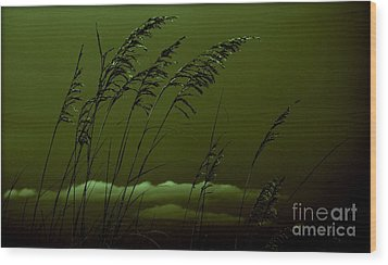 Sea Oat And Clouds Wood Print by Janice Spivey