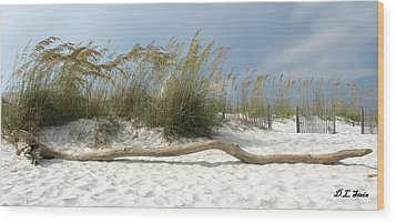 Sea Oats And Driftwood Wood Print by Dennis Stein