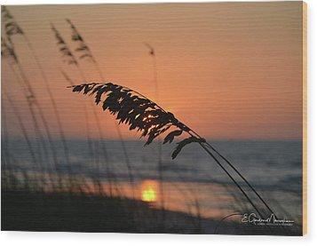 Sea Oats At Sunrise Wood Print by Gordon Mooneyhan