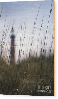 Sea Oats Dunes  Wood Print by Dodie Ulery
