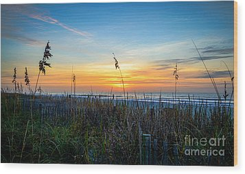 Sea Oats Sunrise Wood Print