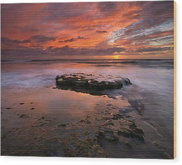 Sea Of Red Wood Print by Mike  Dawson