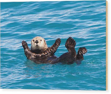 Sea Otter Wood Print by Phil Stone