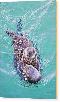 Sea Otter Pup Wood Print