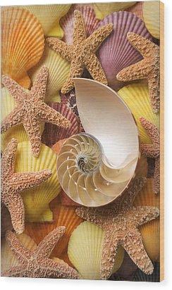 Sea Shells And Starfish Wood Print by Garry Gay