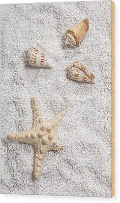 Sea Shells Wood Print by Joana Kruse