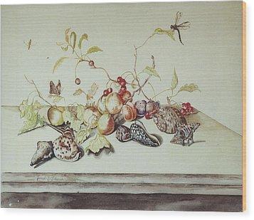 Sea Shells Wood Print by Joseph Valencia