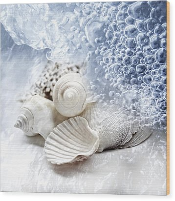 Sea Snails Wood Print by Maika 777