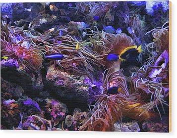 Sea Spaghetti  Wood Print