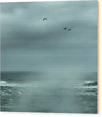 Sea Spray Wood Print by Christine Lathrop