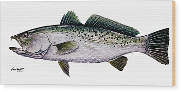 Sea Trout Wood Print