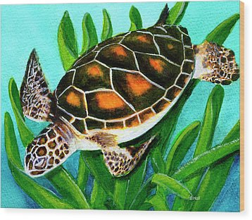 Sea Turtle Honu #352 Wood Print by Donald k Hall