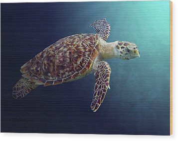Sea Turtle Wood Print by Kathie Miller