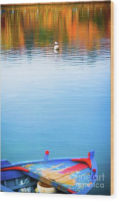 Wood Print featuring the photograph Seagull And Boat by Silvia Ganora