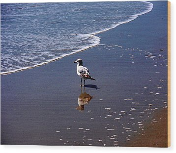Wood Print featuring the photograph Seagull At Myrtle Beach  by Beth Akerman