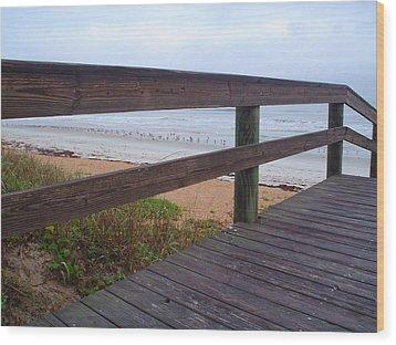Seagull Board Meeting Wood Print by Cheryl Waugh Whitney
