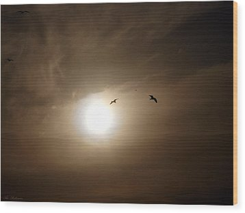 Wood Print featuring the photograph Seagull  In The Light Tunnel  by Arik Baltinester