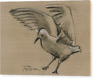 Seagull Landing Wood Print by Ron Wilson