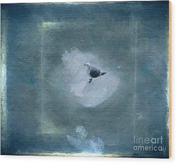 Seagull On Iceflow Wood Print by Victoria Harrington