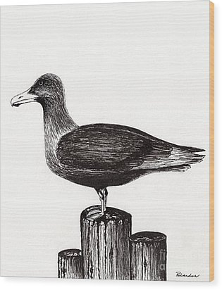 Seagull Portrait On Pier Piling E3 Wood Print by Ricardos Creations