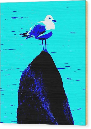 Seagull Scout Wood Print by Rene Crystal