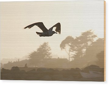 Seagull Sihlouette Wood Print by Marilyn Hunt