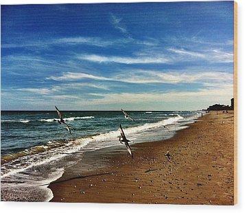 Seagulls At The Beach Wood Print by Carlos Avila