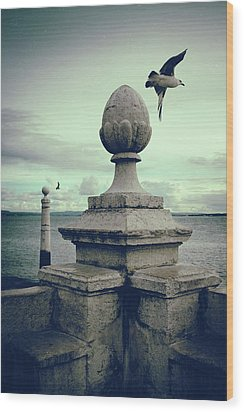 Wood Print featuring the photograph Seagulls In Columns Dock by Carlos Caetano