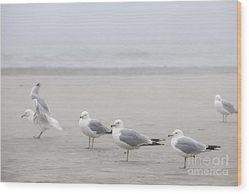Seagulls On Foggy Beach Wood Print