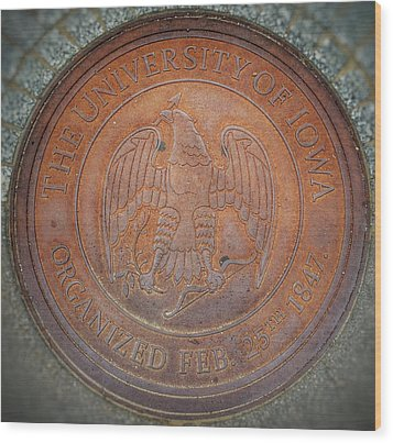 Wood Print featuring the photograph Seal Of Approval  by Jame Hayes