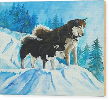 Searching Huskies Wood Print by Marla Hoover
