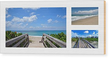 Seascape  Boardwalks Treasure Coast Florida Collage 1 Wood Print