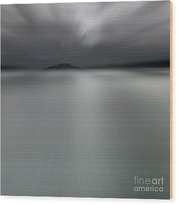 Wood Print featuring the photograph Seascape Mono by Craig B
