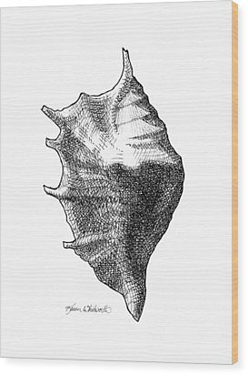 Wood Print featuring the drawing Seashell 1 - Nautical Beach Drawing by Karen Whitworth