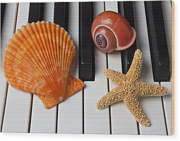 Seashell And Starfish On Piano Wood Print by Garry Gay
