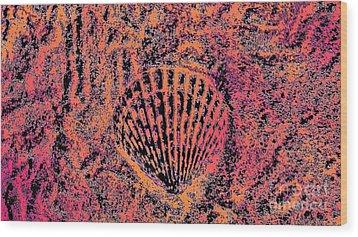 Seashell Delight Wood Print