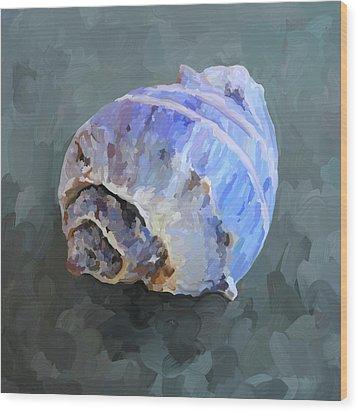 Seashell IIi Wood Print by Jai Johnson