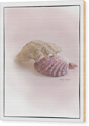 Seashell Love Wood Print by Betty LaRue