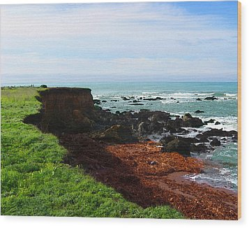 Wood Print featuring the digital art Seaside Bluff by Timothy Bulone